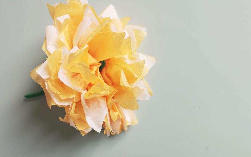 De jolies fleurs en papier de soie